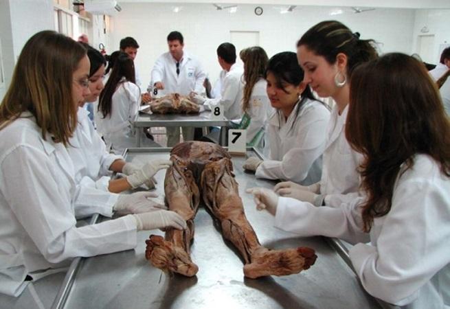 Entidades médicas debatem a abertura de cursos de medicina nesta sexta em Salvador