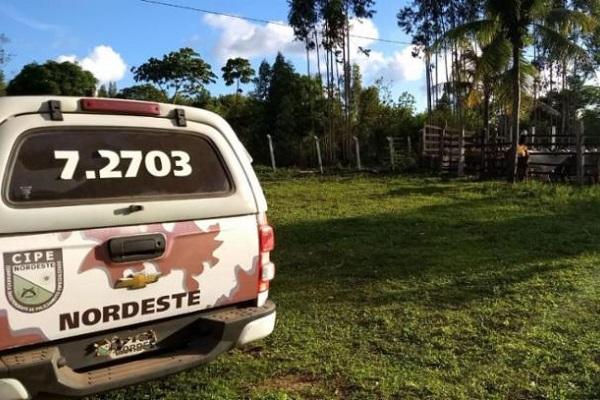 Gado roubado em Tucano é encontrado em fazenda em Entre Rios