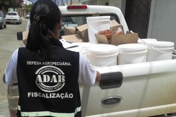 Bahia recebe 6ª Conferência Nacional de Defesa Agropecuária