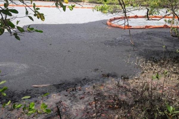 Vazamento em duto da Petrobras atinge rio e manguezal em Candeias