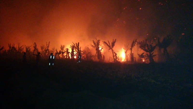 MST e MPA denunciam incêndio criminoso em Ponto Novo