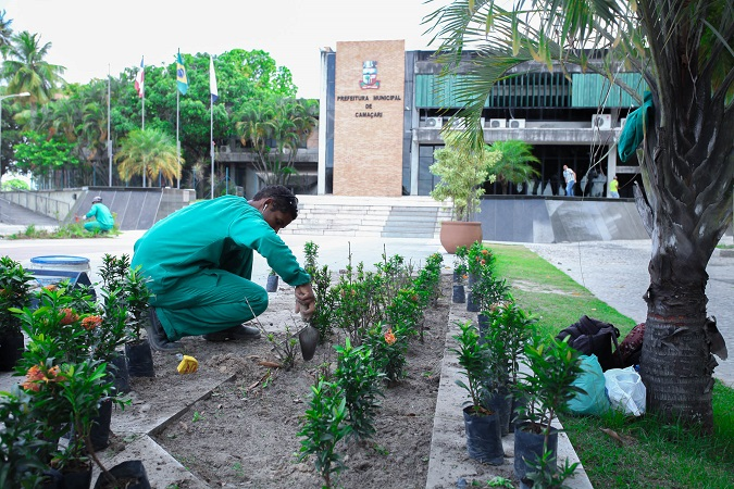 Prefeitura de Camaçari realiza plantio de espécies da Mata Atlântica por toda cidade