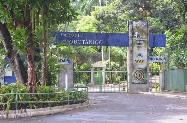 Zoológico de Salvador inicia marcação de passeios noturnos