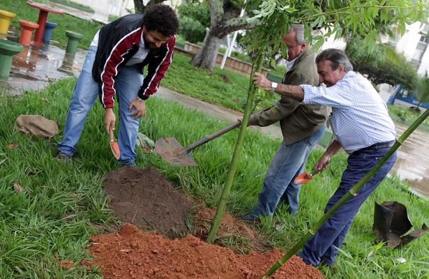 Prefeitura de Salvador e iniciativa privada plantam árvores no Stiep
