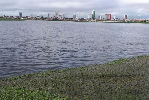 Conder inicia retirada de baronesas da Lagoa Grande em Feira de Santana