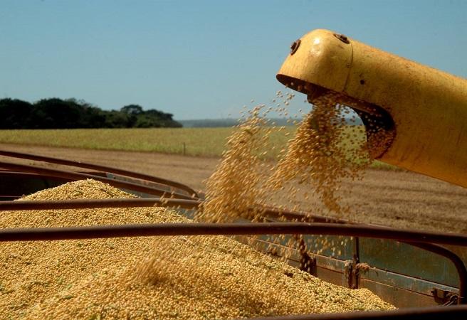 IBGE estima redução de 20% na produção de soja na Bahia em 2019