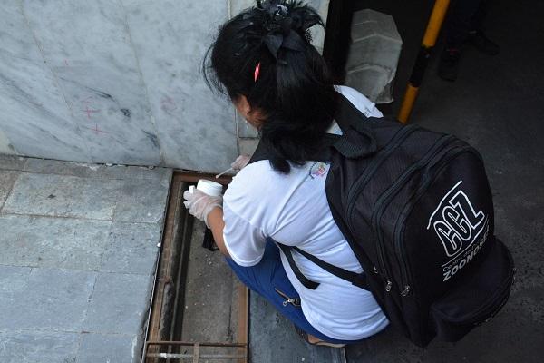 Centro de Zoonoses intensifica ações de combate ao Aedes aegypti em Salvador