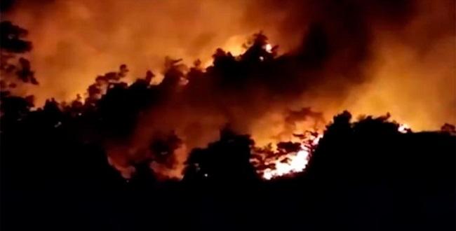 Incêndio atinge vegetação na zona rural de Amargosa