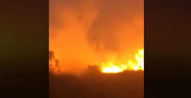 Focos de incêndio atingem vegetação em Canavieiras, Uruçuca e Eunápolis