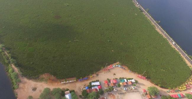 MPF e MP-BA responsabilizam Inema e Embasa por poluição no Rio São Francisco