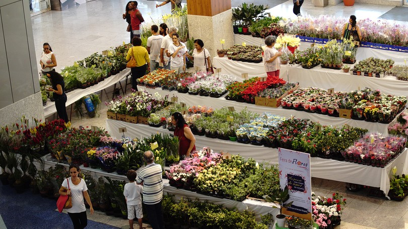 Salvador Shopping terá Feira de Flores de 02 a 15 de setembro