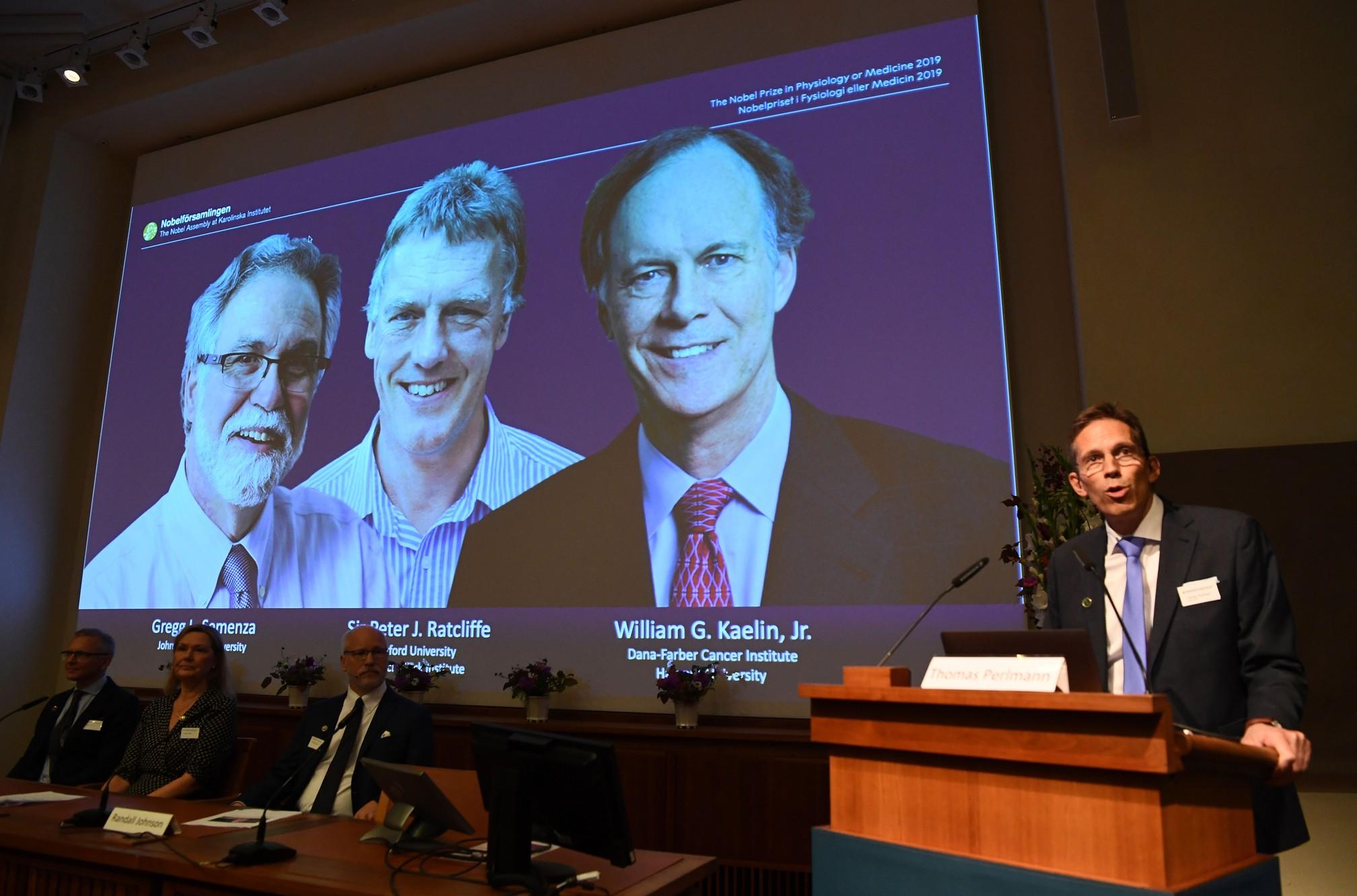 Estudo sobre adaptação das células ao oxigênio leva o Nobel de Medicina de 2019
