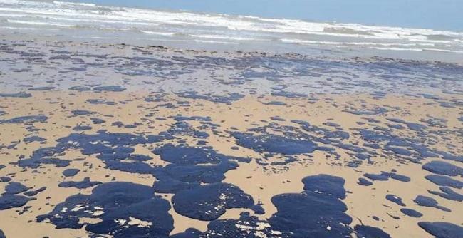 Manchas de óleo chegam à foz do Rio Parnaíba no Piauí