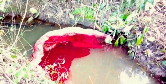 Carreta derrama 40 mil litros de óleo diesel no Rio Buranhém em Itabela