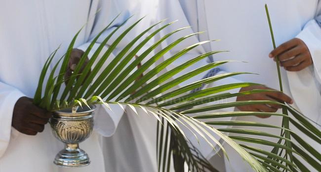 Paróquias de Salvador vão celebrar Missas do Domingo de Ramos pelas redes sociais