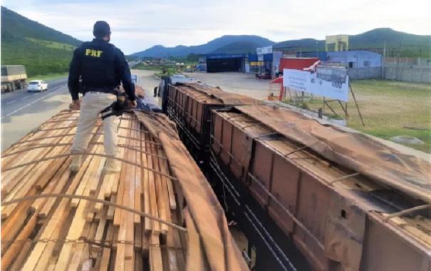 PRF apreende cerca de 100 toneladas de madeira de origem ilegal em Jequié
