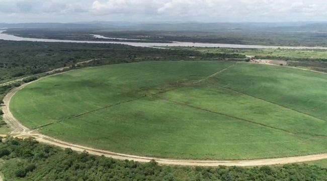 Usina de cana-de-açúcar vai gerar 8 mil postos de trabalho na região de Barra