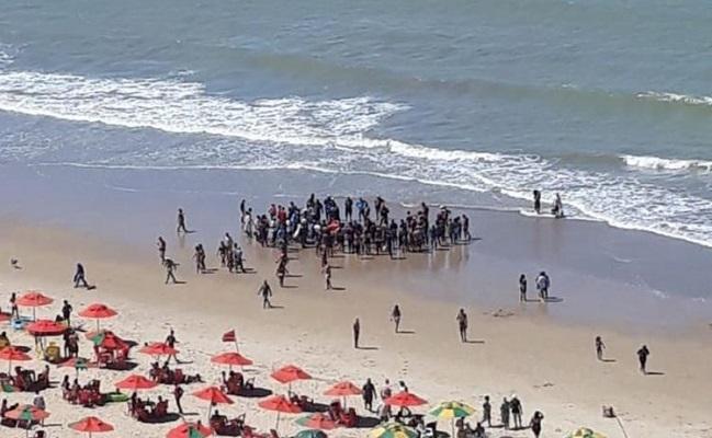 Litoral de Pernambuco registra 2o ataque de tubarão em 15 dias