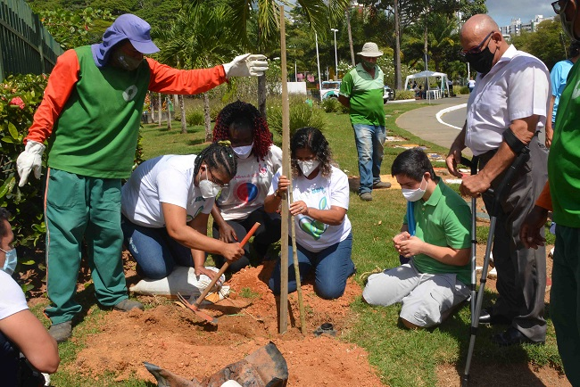 Campanha Plante o Bem distribui mil mudas no Parque da Cidade
