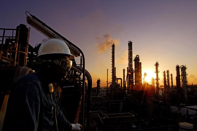 OEC abre inscrições para 63 vagas no Estágio de Férias 2021-2022